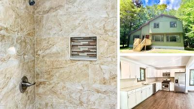 Lake Ariel Single Family Home For Sale: 1010 Navaho Terrace