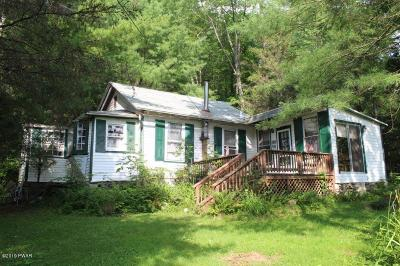 Lake Ariel Single Family Home For Sale: 300 E Shore Dr