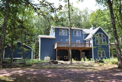 Pike County Single Family Home For Sale: 104 Slalom Ct