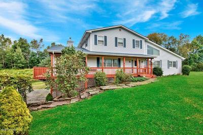Lake Ariel Single Family Home For Sale: 116 Stickman Ln