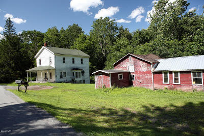 Equinunk Single Family Home For Sale: 4100 River Rd
