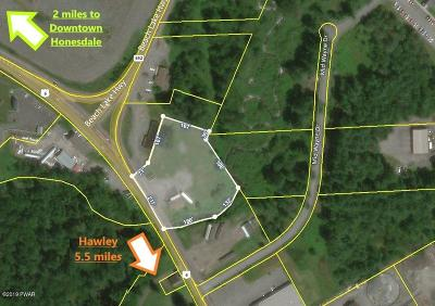 Wayne County Commercial For Sale: 1014 Texas Palmyra Hwy