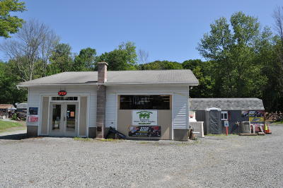 Wayne County Commercial For Sale: 1481 Roosevelt Hwy