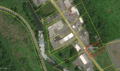 Honesdale Commercial For Sale: 1084 Texas Palmyra Hwy
