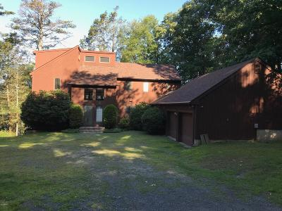 Pike County, Wayne County Single Family Home For Sale: 100 Zimmerman Ln