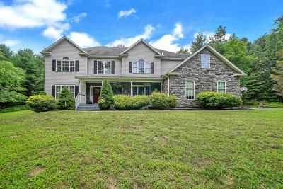 Single Family Home For Sale: 133 Bluestone Cir
