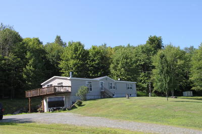 Equinunk Single Family Home For Sale: 821 Pine Mill Rd