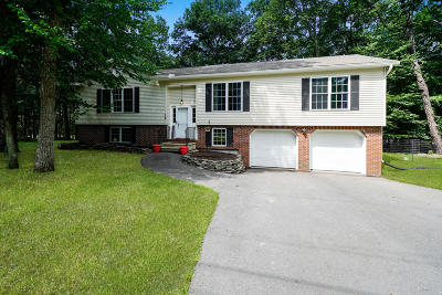 Milford Single Family Home For Sale: 129 Butternut Rd