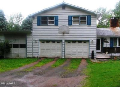 Newfoundland Single Family Home For Sale: 173 Mountain View Rd