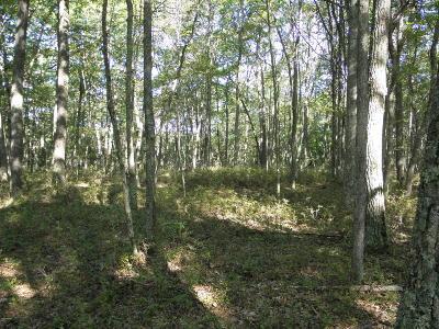 Tink Wig Mountain Lake Estates Residential Lots & Land For Sale: Eastwood Circle