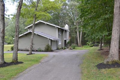 Milford Single Family Home For Sale: 160 Ridge Dr