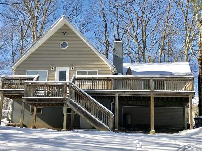 Dingmans Ferry Single Family Home For Sale: 167 Wild Acres Dr