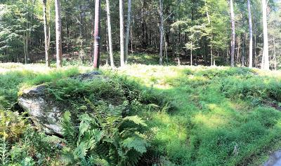 Damascus Residential Lots & Land For Sale: River Rd