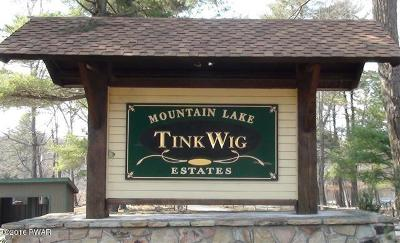 Tink Wig Mountain Lake Estates Residential Lots & Land For Sale: 623 Catamount Rd