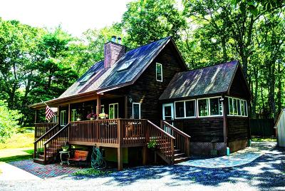 Dingmans Ferry Single Family Home For Sale: 151 Jack Pine Dr