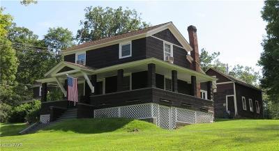 Narrowsburg NY Single Family Home For Sale: $194,000
