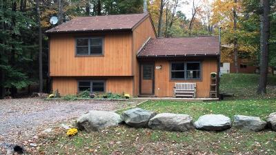 Lake Ariel Single Family Home For Sale: 44 Hibernation Road