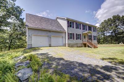 Tafton Single Family Home For Sale: 175 Gunstock Ln