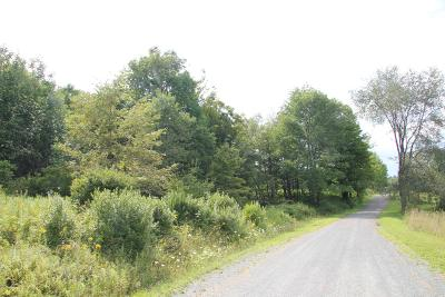 Equinunk PA Residential Lots & Land For Sale: $37,500