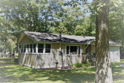Dingmans Ferry Single Family Home For Sale: 101 Kitty Harker Rd