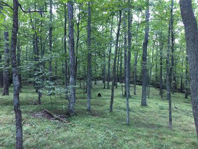 Honesdale Residential Lots & Land For Sale: 52 Hill Top Rd