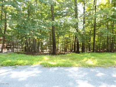 Wallenpaupack Lake Estates Residential Lots & Land For Sale: 52 Mustang Rd