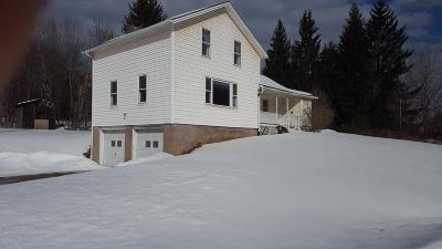 Equinunk Single Family Home For Sale: 55 Creek Rd