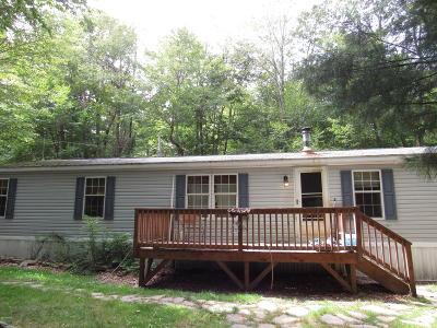 Gouldsboro Single Family Home For Sale: 117 Sitting Bull Trl