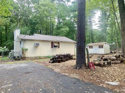 Dingmans Ferry Single Family Home For Sale: 100 Iroquis Trl