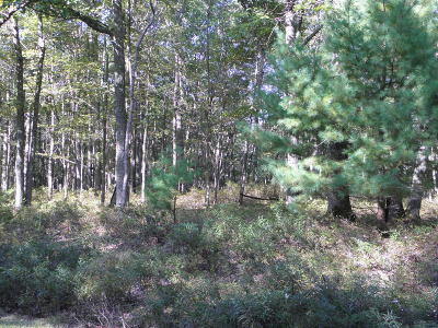 Tink Wig Mountain Lake Estates Residential Lots & Land For Sale: Briarcrest Rd