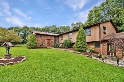Lake Ariel Single Family Home For Sale: 314 Gravity Rd