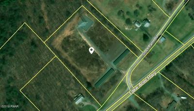 Lake Ariel Commercial For Sale: 537 Stock Farm Rd