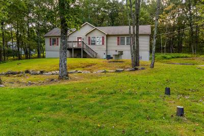 Milford Single Family Home For Sale: 175 Primrose Ln