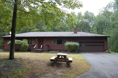 Milford Single Family Home For Sale: 167 Wild Meadow Dr