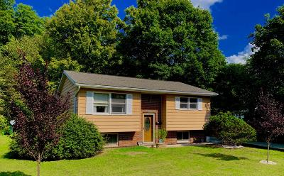 Honesdale Single Family Home For Sale: 108 14th St