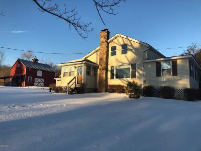 Honesdale Single Family Home For Sale: 382 Eighmy Rd