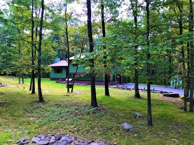 Pike County, Wayne County Single Family Home For Sale: 191 Wild Meadow Dr