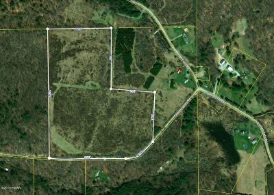 Wayne County Residential Lots & Land For Sale: Pleasant Valley Rd