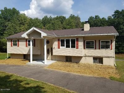 Hawley Single Family Home For Sale: 113 Cloudcrest Dr