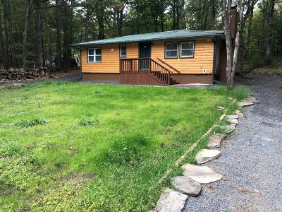 Dingmans Ferry Single Family Home For Sale: 134 E. Shore Dr