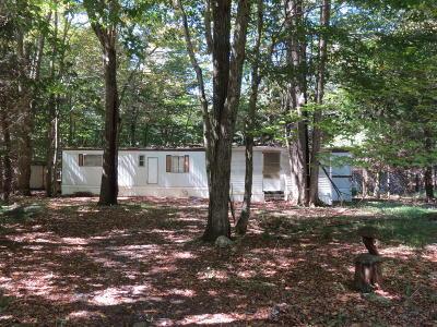 Gouldsboro Single Family Home For Sale: 9 Ute Path