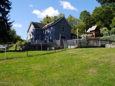 Wayne County Single Family Home For Sale: 1207 Pine Mill Rd
