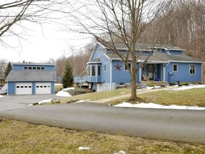 Honesdale Single Family Home For Sale: 42 Blue Moon Ln