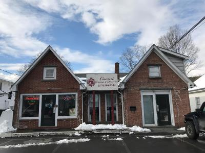 Milford Commercial For Sale: 203 6th St