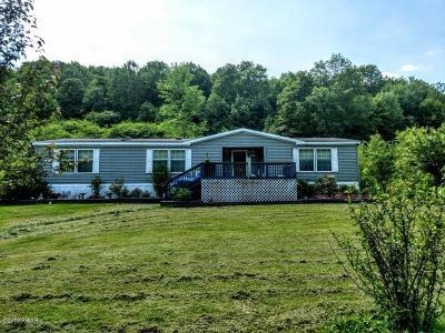 Susquehanna PA Single Family Home For Sale: $110,000