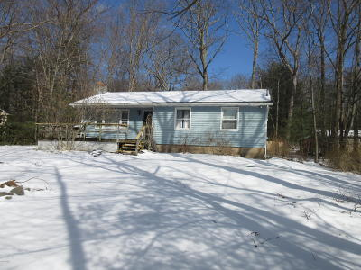 Dingmans Ferry Single Family Home For Sale: 112 Barberry Ln