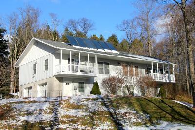 Wayne County Single Family Home For Sale: 4 Birch Ln