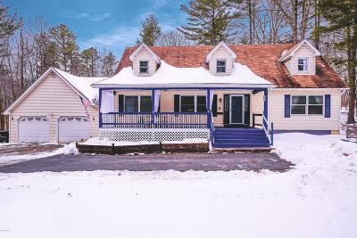 Milford Single Family Home For Sale: 129 Blueberry Dr