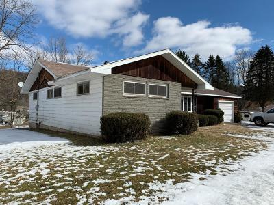 Honesdale Single Family Home For Sale: 1836 Parkway Dr