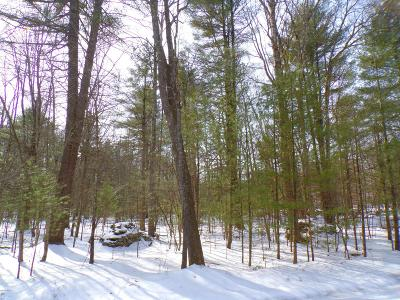 Hawley PA Residential Lots & Land For Sale: $29,900